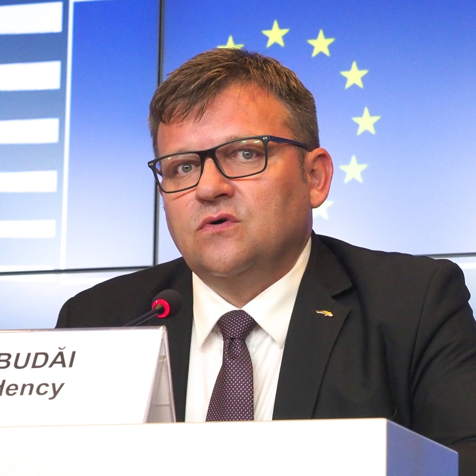 Marius-Constantin Budai, Minister of Labour and Social Justice of Romania